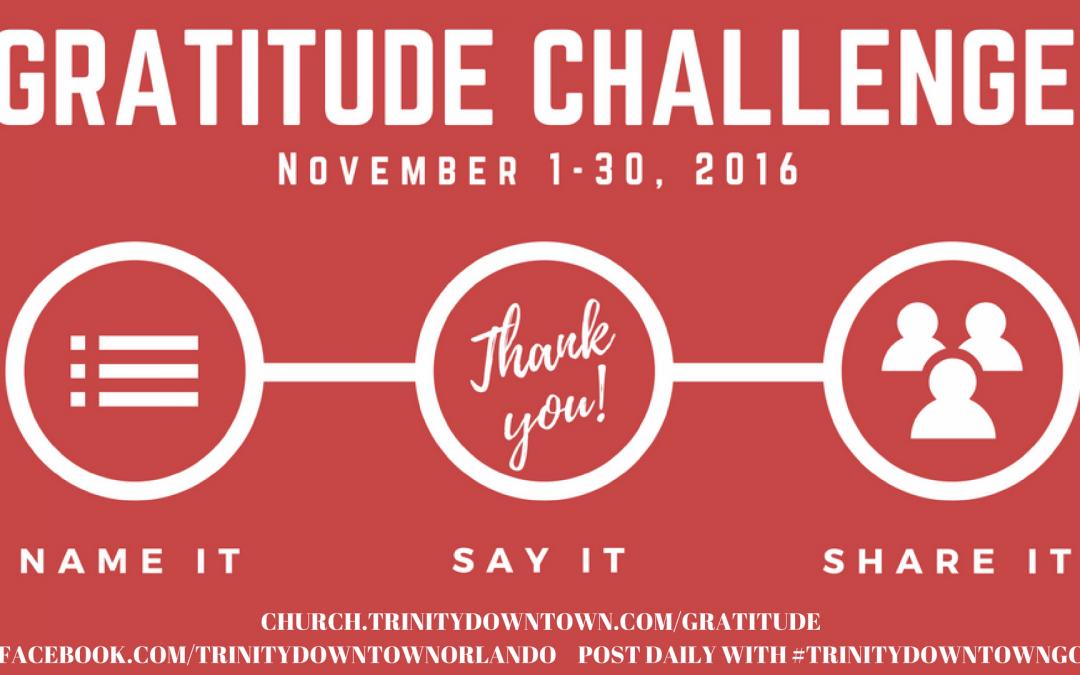 Gratitude Challenge Starts Today