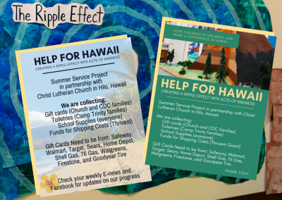 help for hawaii flyers
